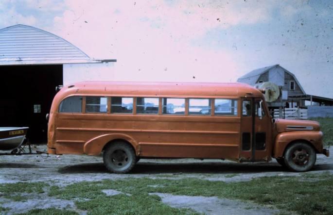 bumble-bee-bus2